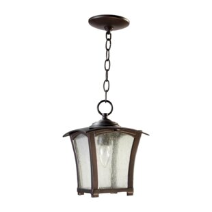 Norman 1-Light Outdoor Hanging Lantern
