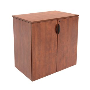 Linh Contemporary 2 Door Storage Cabinet