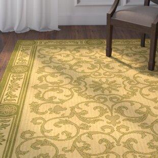 Carsen NaturalOlive IndoorOutdoor Area Rug