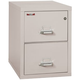 Fireproof 2 Drawer Vertical Filing Cabinet