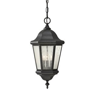 Linhart Hanging Lantern By Darby Home Co Outdoor Lighting