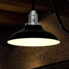 Price Check Peony 1-Light Outdoor Barn Light By Cocoweb