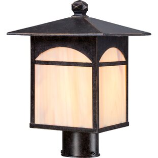 Inexpensive Dissinger Outdoor 1-Light Lantern Head By Loon Peak