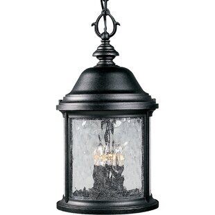 Drumakeely 3-Light Outdoor Hanging Lantern