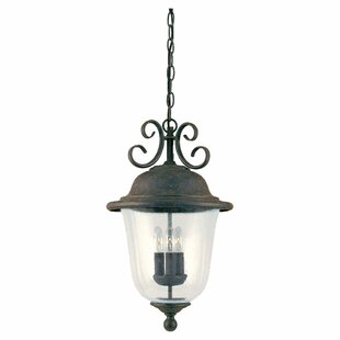 Compare prices Elizabeth 3-Light Outdoor Pendant By Fleur De Lis Living