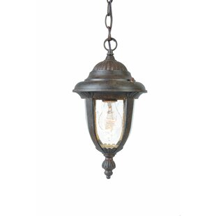 Prestwood 1-Light Outdoor Hanging Lantern