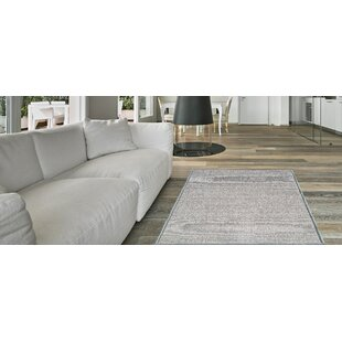 Padang Sidempuan Solid Rubber Backed Gray Area Rug
