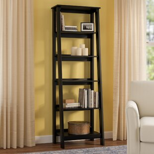 Review Massena Ladder Bookcase by Three Posts