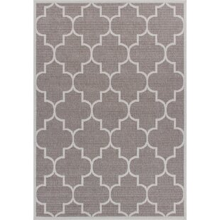 Zachery Weather-Proof Gray Indoor/Outdoor Area Rug
