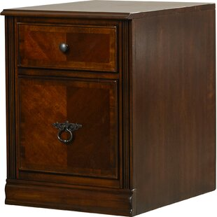 Albany 2 Drawer File Cabinet