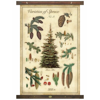 Millwood Pines Spruce Tapestry