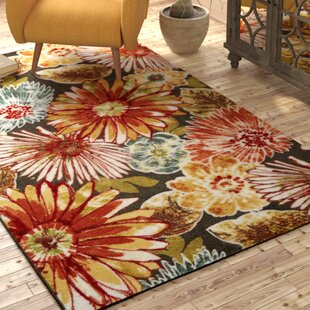 Kamberk Multicolored Area Rug