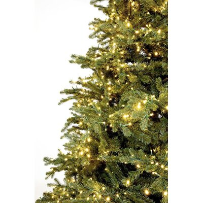 slim carolina fraser fir artificial christmas tree with warm white lights with remote - Fraser Fir Artificial Christmas Tree