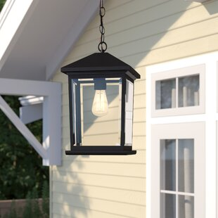 Lovette Contemporary 1-Light Outdoor Hanging Lantern