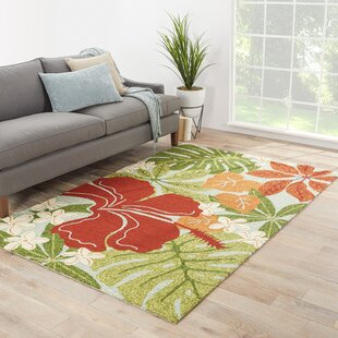 Artemi Hand-Hooked Red/Green Indoor/Outdoor Area Rug