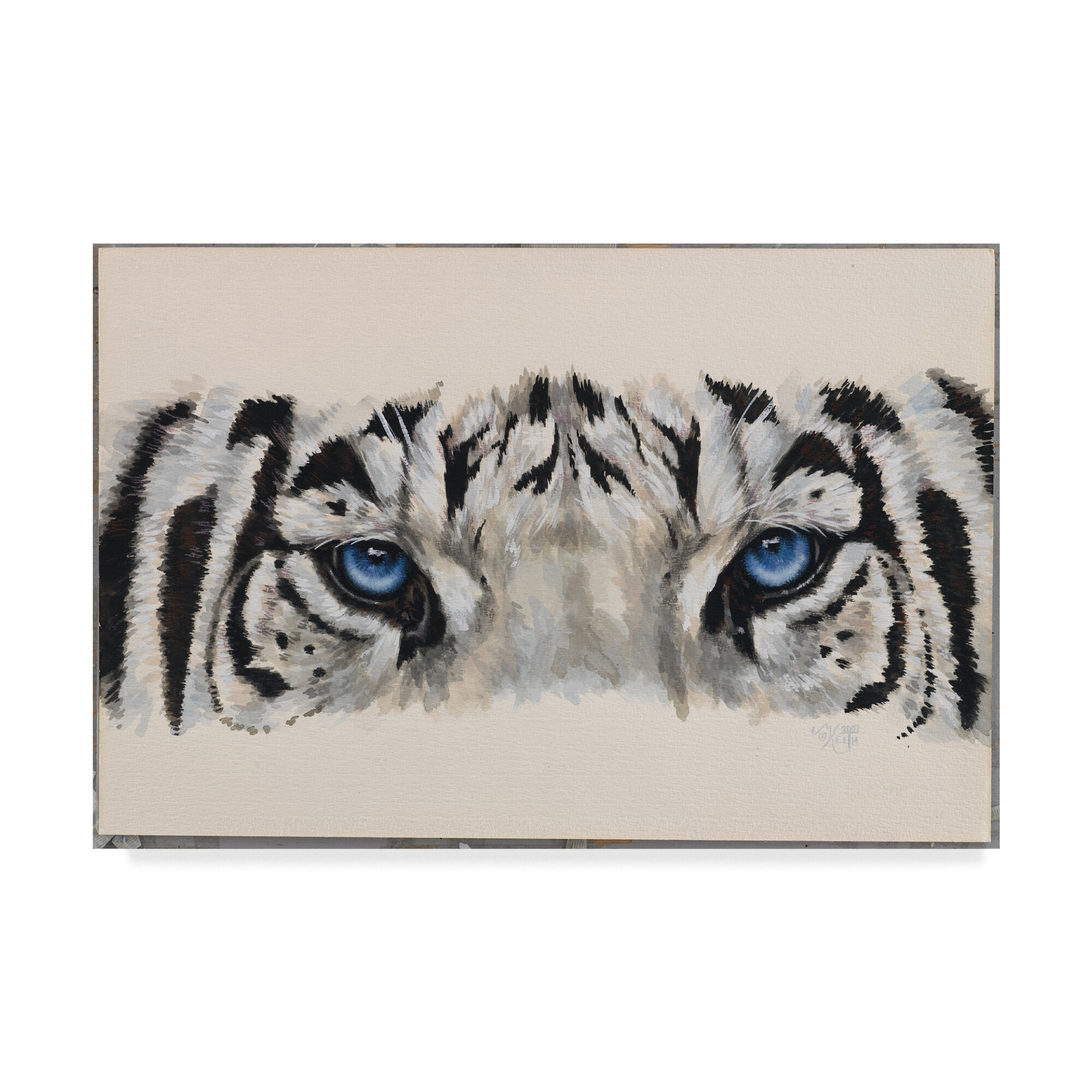 Trademark art eye catching white tiger oil painting print on wrapped canvas wayfair ca