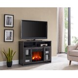 Troiano TV Stand for TVs up to 50 with Electric Fireplace Included by Foundry Select