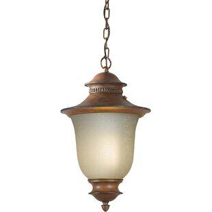Leola 1-Light Outdoor Pendant By Charlton Home Outdoor Lighting