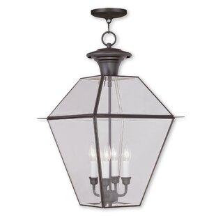 Orchard Lane 4-Light Outdoor Hanging Lantern
