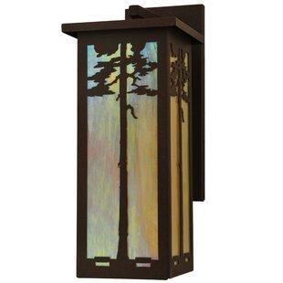 Order 1-Light Outdoor Wall Lantern By Meyda Tiffany