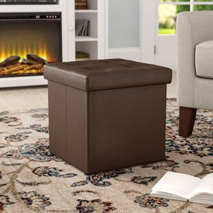 Perfect Woven Storage Ottoman | Wayfair
