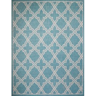 Sauceda Turquoise Indoor/Outdoor Area Rug