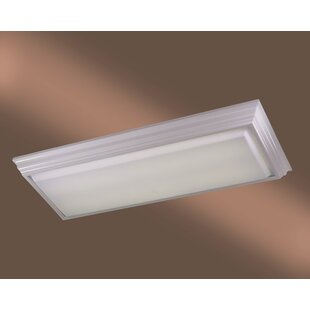 Alvina Rectangle Kitchen Strip Light