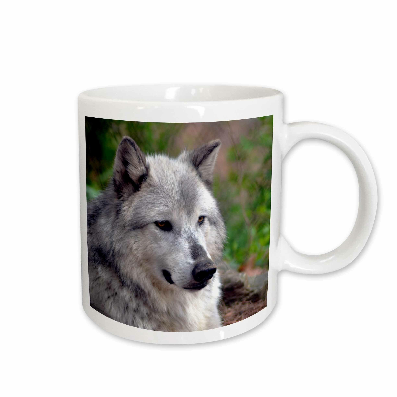 East Urban Home Wolf Posing Coffee Mug Wayfair
