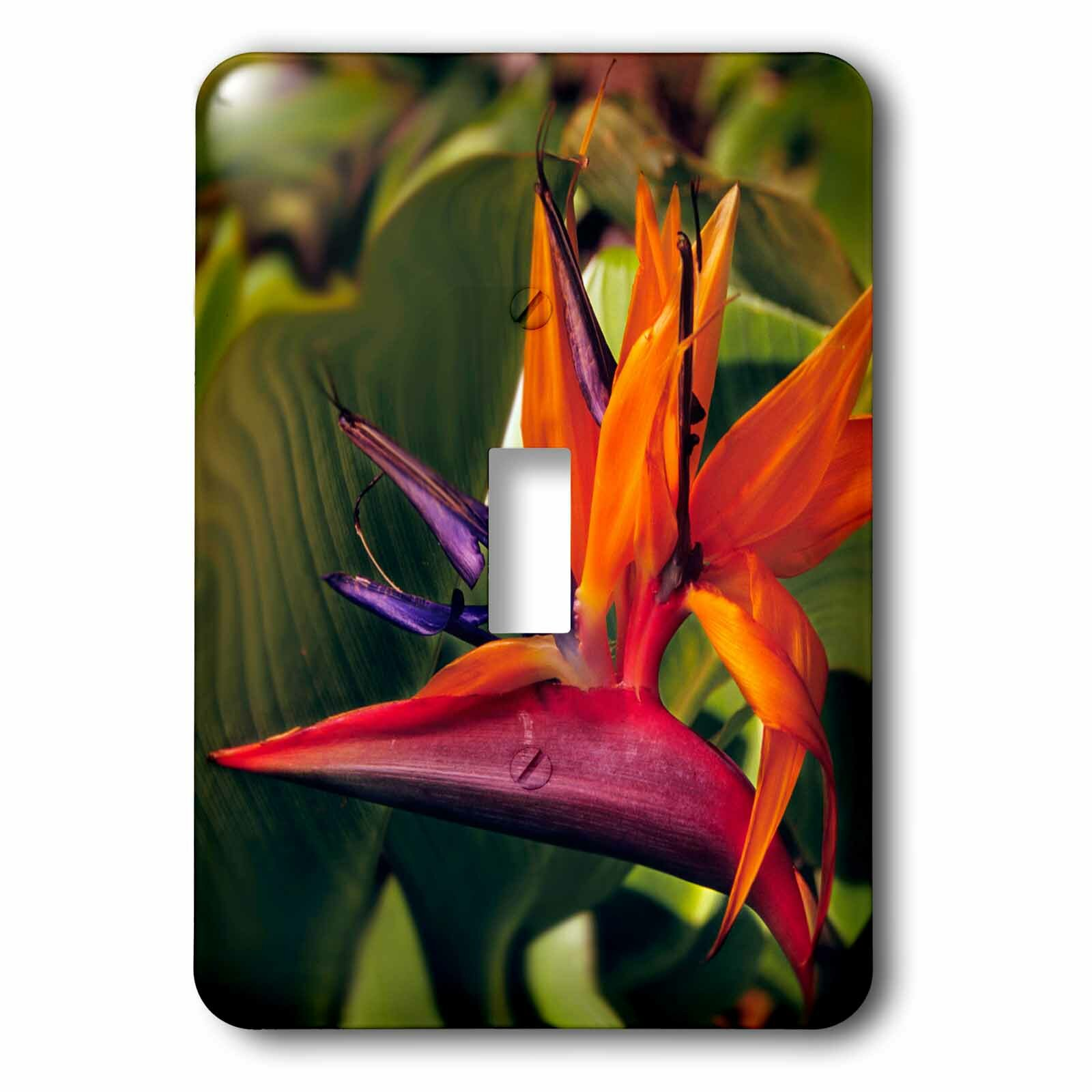 3drose Bird Of Paradise Blooming 1 Gang Toggle Light Switch Wall Plate Wayfair