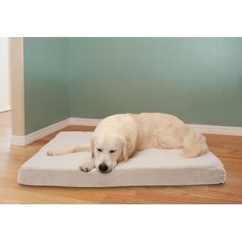 Tucker Murphy Pet Weddle Pennsylvania State Of Mind Outdoor Dog Pillow Wayfair