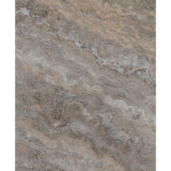 Seven Seas Silver Trevertine Honed 12 X 24 Marble Field Tile In Brown Reviews Wayfair