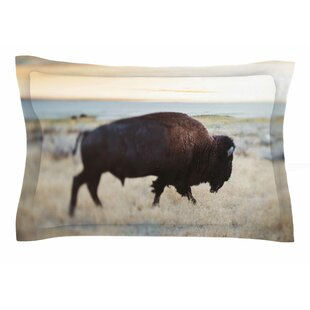 Chelsea Victoria 'Buffalo Bill' Photography Sham by East Urban Home Great price