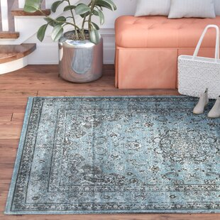 Murphysboro Power Loom Blue/Brown/Black Outdoor Area Rug By Alcott Hill
