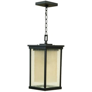 Delfin Large Outdoor Pendant in Oiled Bronze