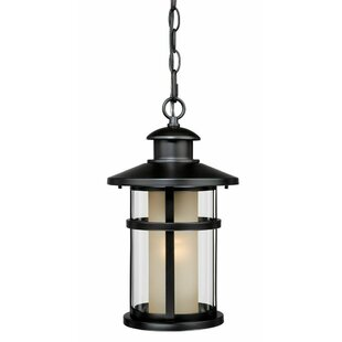 Enger 1-Light Outdoor Hanging Lantern