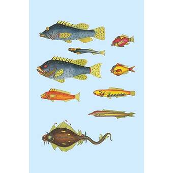 Buyenlarge Silvery Hairtail And Scabbard Fish By Robert Hamilton Painting Print Wayfair