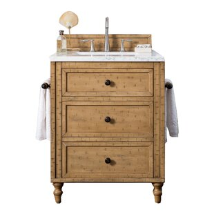 26 Inch Bathroom Vanity Wayfair