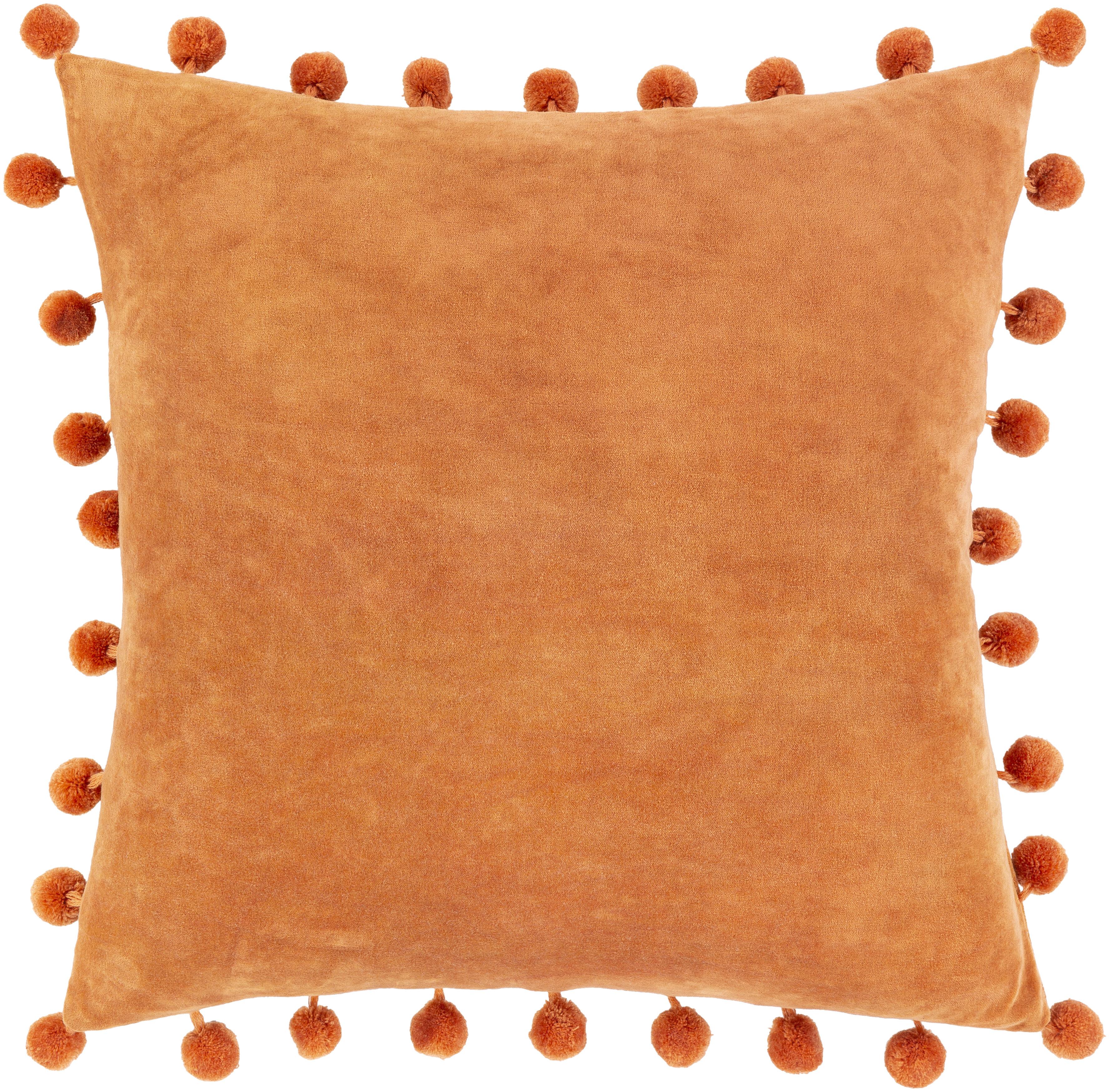 Ridpath Velvet Throw Pillow Cover Reviews Joss Main