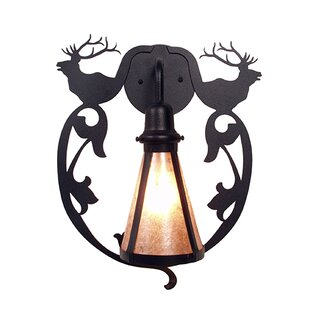 Look for Bavarian 1-Light Outdoor Wall Lantern By Steel Partners