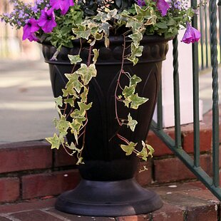 PSW Composite Urn Planter by Arcadia Garden Products