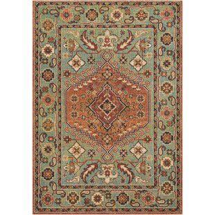 Naranjo Market Traditional Green Area Rug