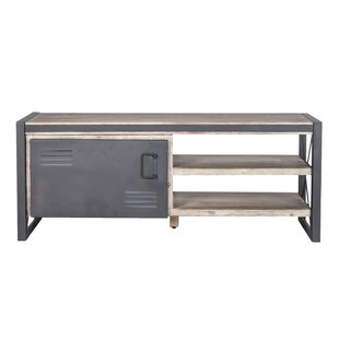 Corbett 1 Door TV Stand by Williston Forge