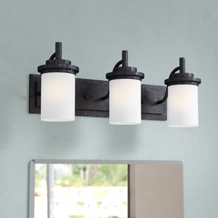 Affordable Dashiell 3-Light Vanity Light By Three Posts