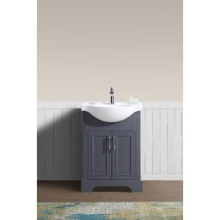 Alessandro 24 Single Bathroom Vanity Set by Charlton Home