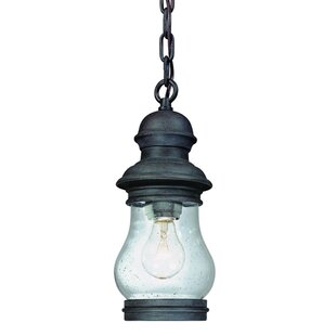 Find the perfect Nimitz 1-Light Outdoor Hanging Lantern By Darby Home Co