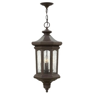 Coupon Raley 1-Light Outdoor Hanging Lantern By Hinkley Lighting