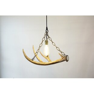 Pleasant Deer Antler Lighting Wayfair Wiring Digital Resources Xeirawoestevosnl