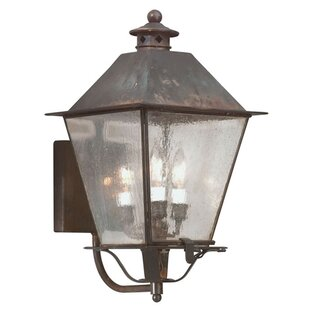 Order Theodore 3-Light Outdoor Sconce By Darby Home Co