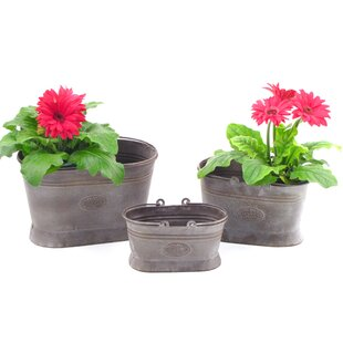 Younkin Oval 3 Piece Iron Pot Planter Set With Handle