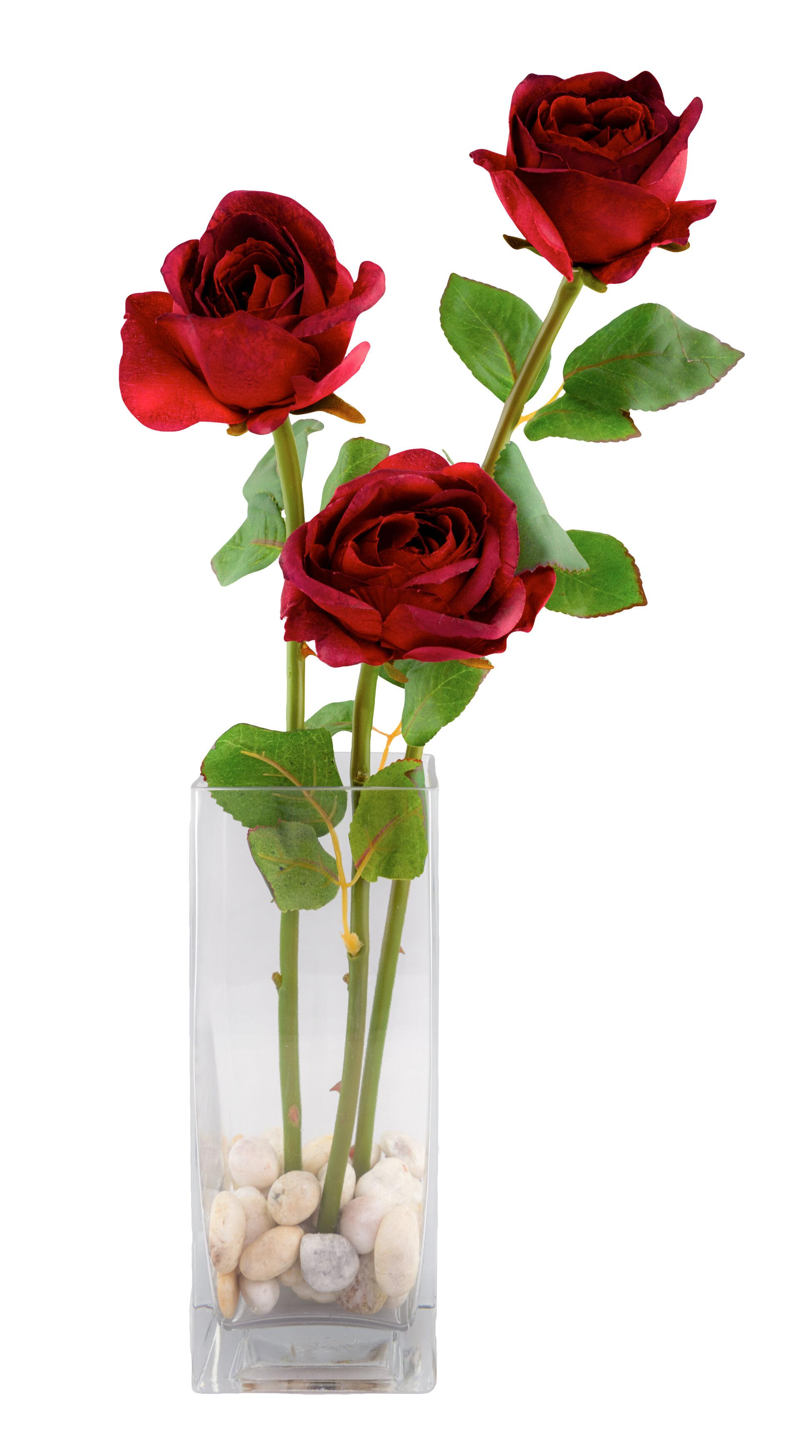 Red Vanilla 3 Rose Floral Arrangement & Reviews | Wayfair
